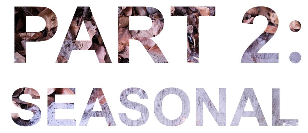 Part 2 Seasonal